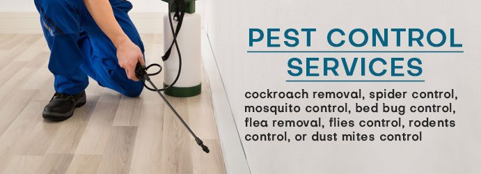 Pest Control Mount Whitestone